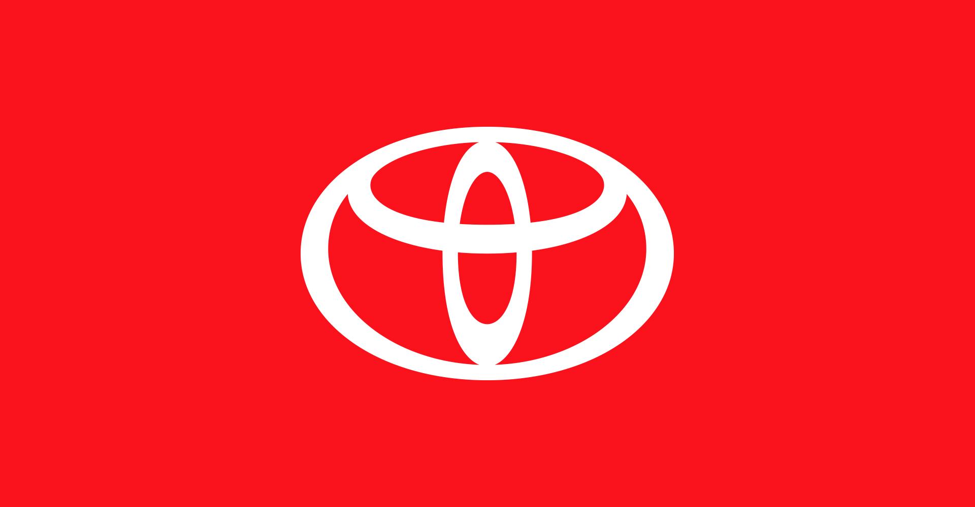 Toyota Identity System